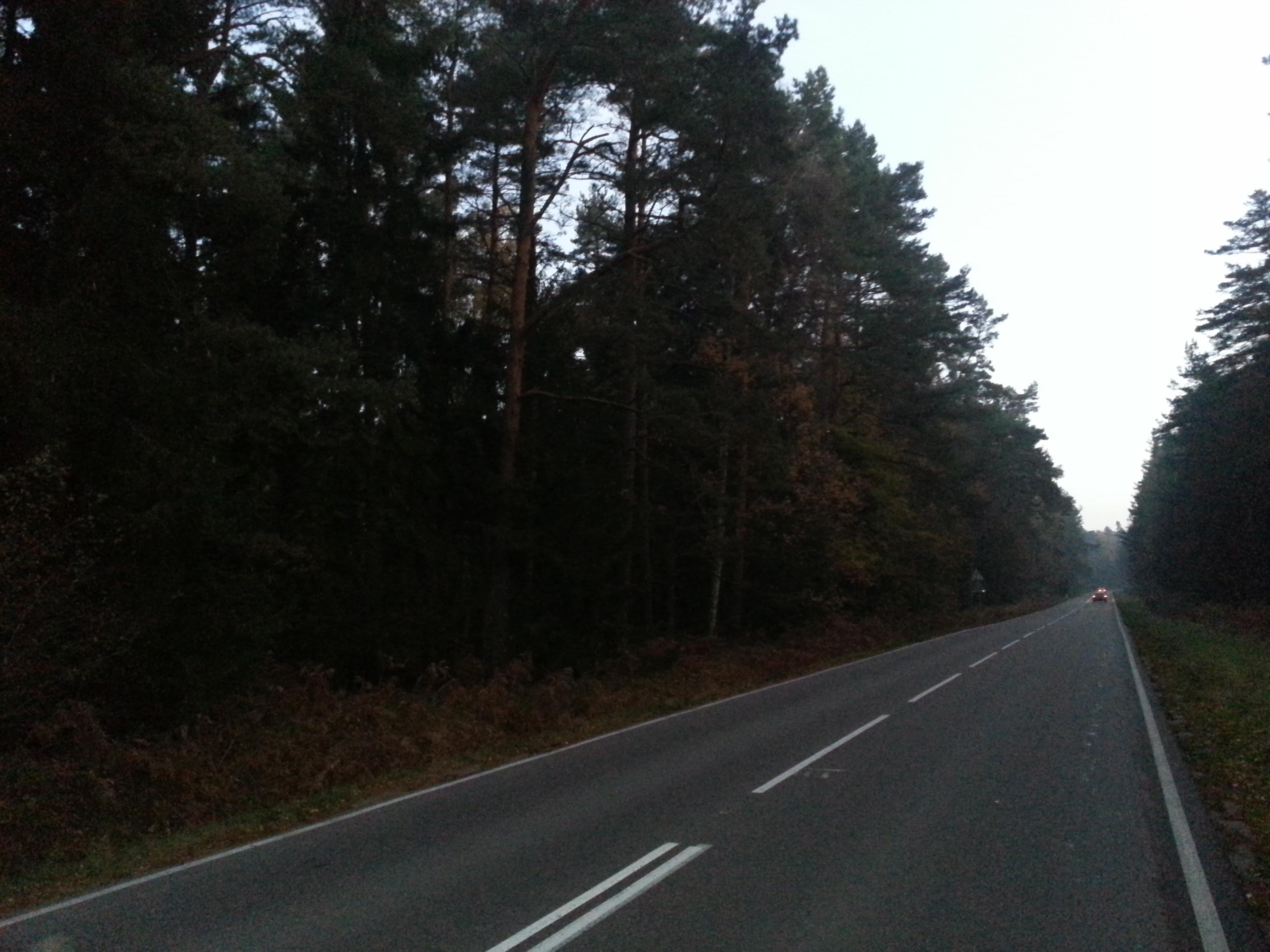 Дорога на поселок Лесной