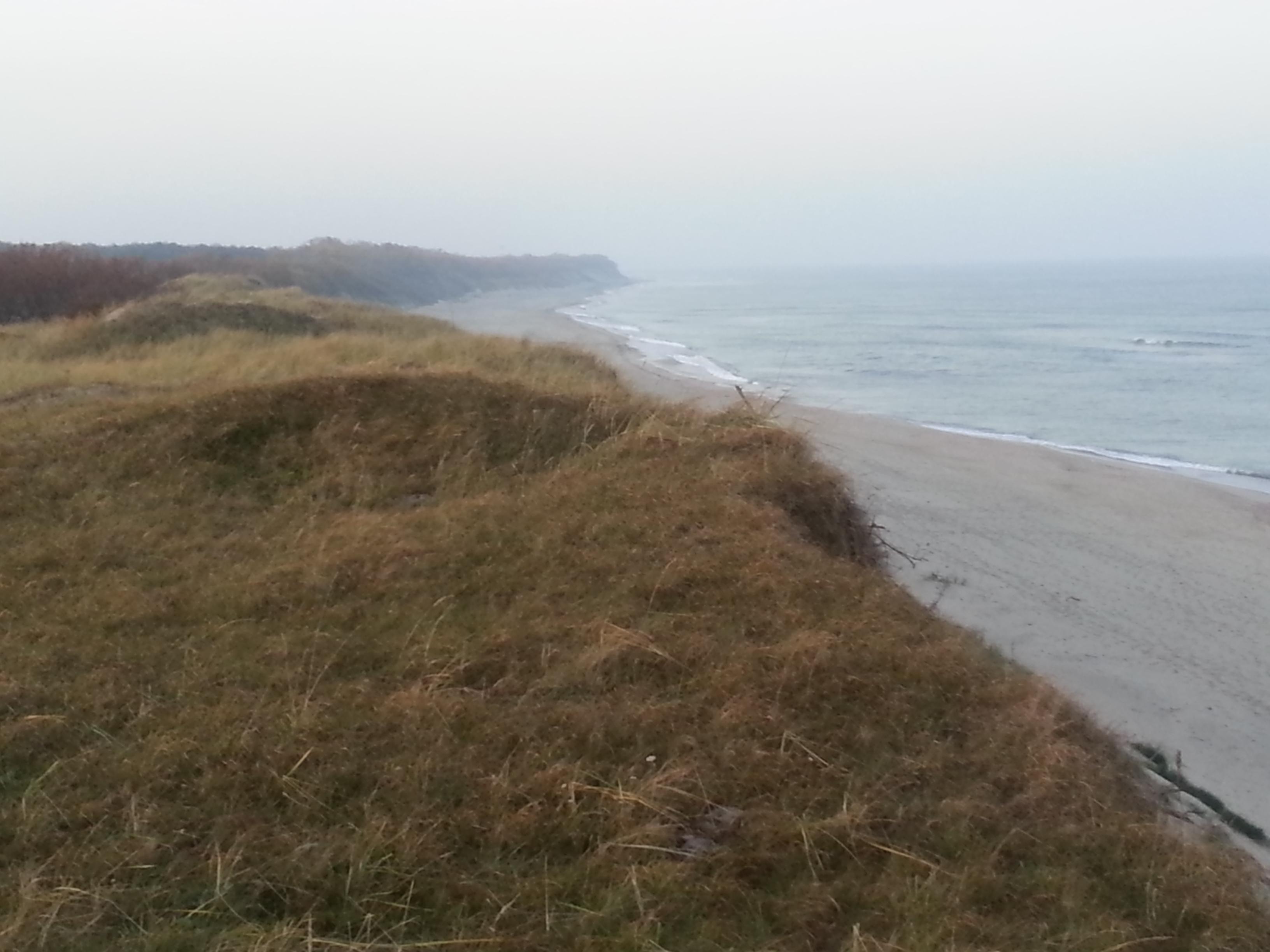 Балтийский берег - красота и безмятежность!