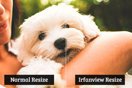 сравнение картинок в irfanview