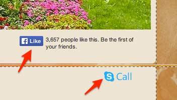 кнопки фейсбук и скайп на нашем готовом сайте