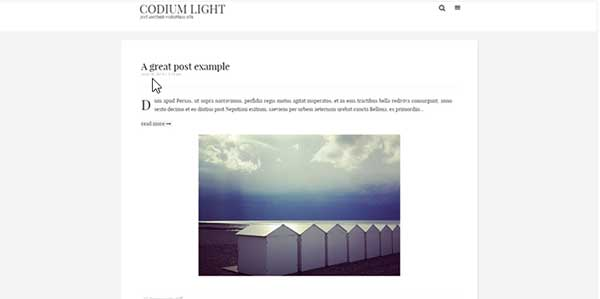 Codium Light