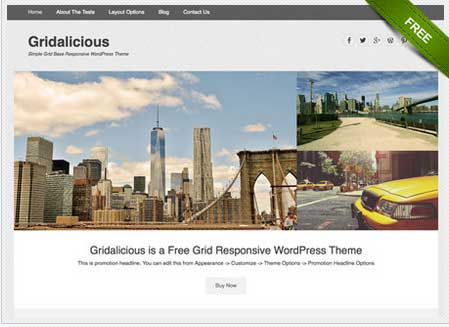 67 простых, чистых в минимализме адаптивных шаблонов на WordPress бесплатно