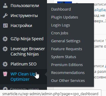 Заходим в плагин Wp Clean Up Optimizer