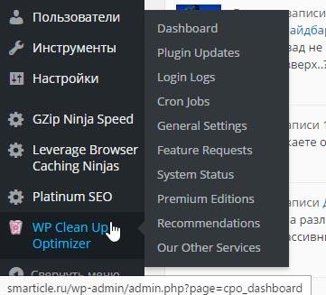 Заходим в плагин Wp Clean Up Optimizer