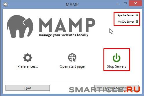 Первый запуск локального сервера MAMP