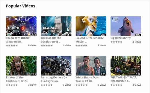 Wordpress плагины видео галерей - 9 самых лучших решений для блога, Бизнес блог Макса Метелева