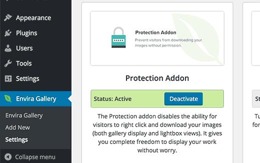 Защита от копирования изображений с помощью расширения для Envera Gallery