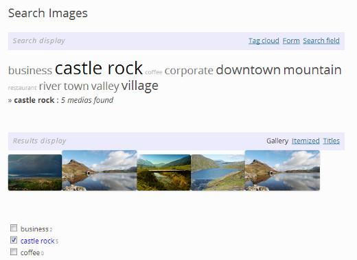 Поиск изображений на сайте по тегам