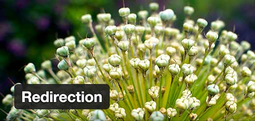 Redirection - плагин редиректа на WordPress
