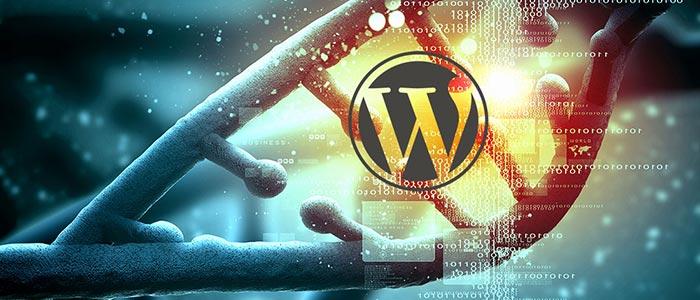 Работа с изображениями Wordpress - исправление ошибок для новичков