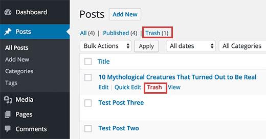 Что такое корзина WordPress