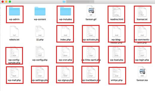 Ключевые файлы и каталоги WordPress