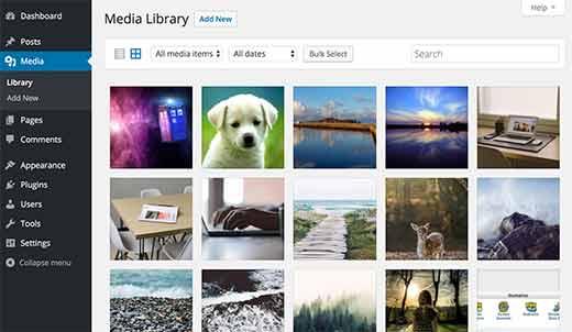 Как WordPress хранит изображения