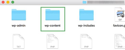 Папка wp-content