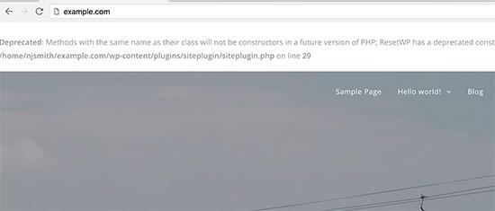 Вот так выглядит вывод ошибки в коде php со стороны пользователя в браузере