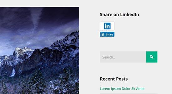 Кнопка поделиться Linkedin в сайдбаре блога на WordPress