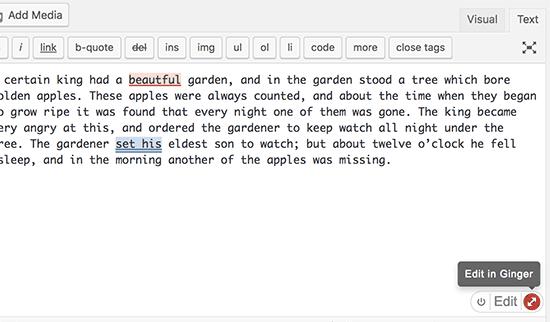 Ginger- плагин проверки грамматики онлайн на WordPress